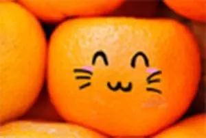 脐橙果肉细腻,多汁味增