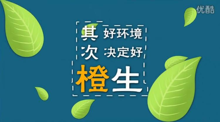 鲜美的脐橙让创业阶段的蔡哥卖出了好成绩